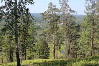 Село Савватеевка